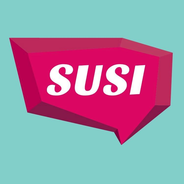 SUSI Grants for 2018/19 Academic Year