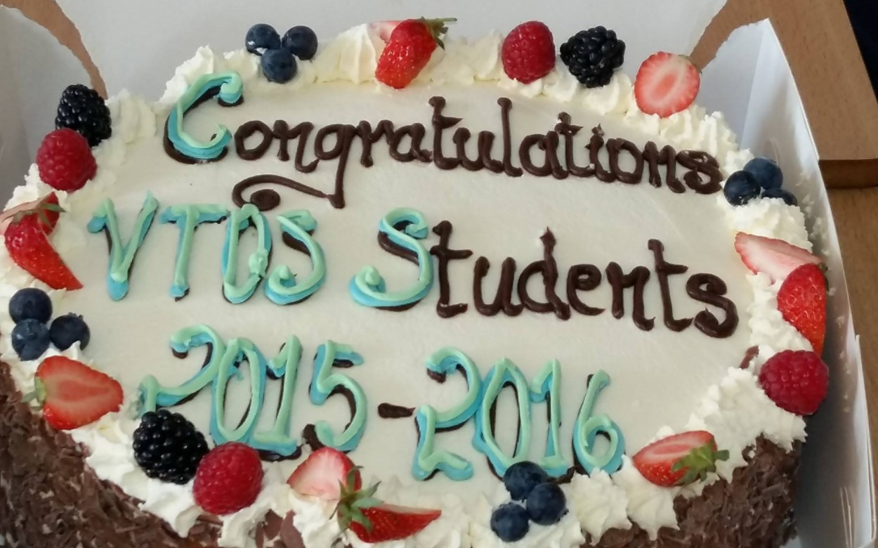 VTOS Celebration Cake